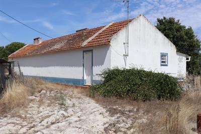 Renovation near Muda