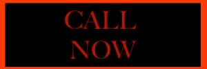 call-now-button