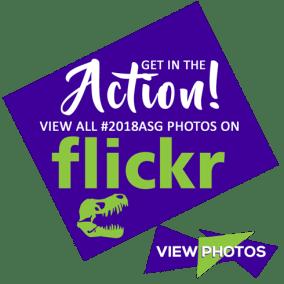 flickr490