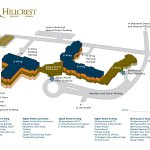 Neighborhood Map illustration and design