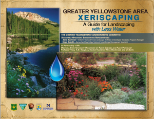 USFS Xeriscape Guide Design and Illustrations 2013
