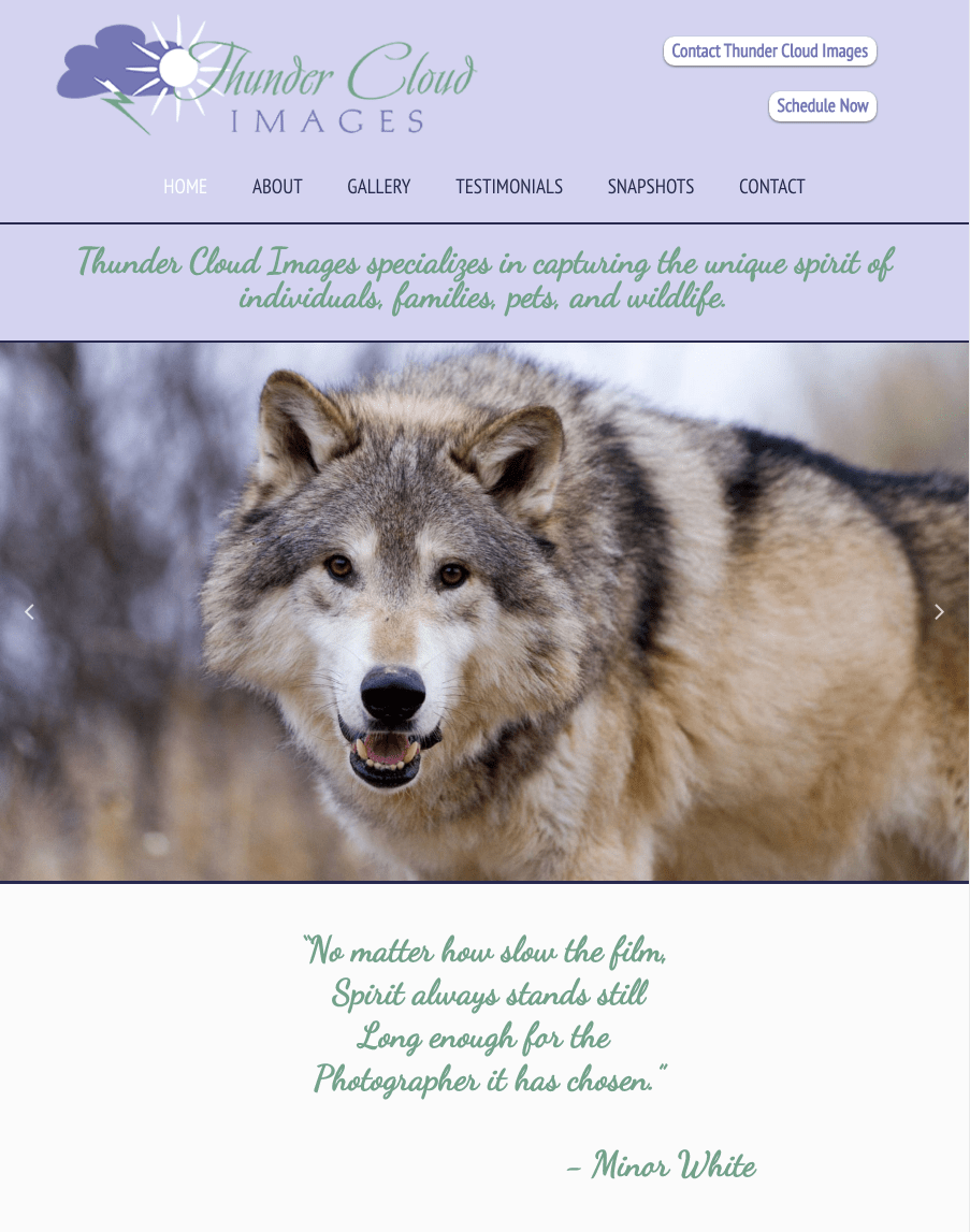 Website Design for Bozeman Photography Website