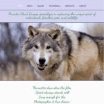 Website Design for Bozeman Photography Website