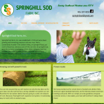 Website Design for Bozeman Small Business