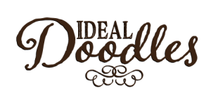 ideal_doodles_logo