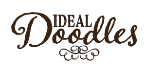 ideal_doodles_logo