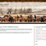 Wordpress website design for Montana wildlife group