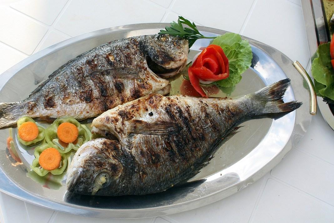 Fish can help cure preterm birth