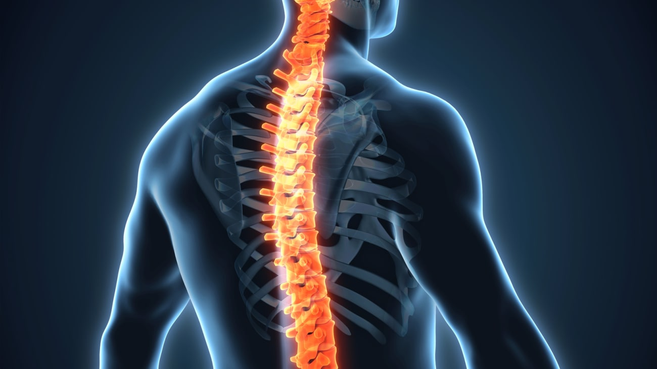 Hydrogel Could Help Repair Damaged Spinal Nerves