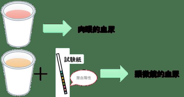 urine blood test3
