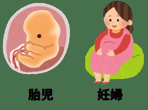胎児と妊婦の図
