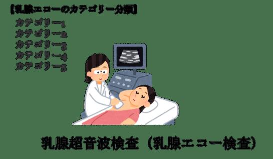 breast echo category classification