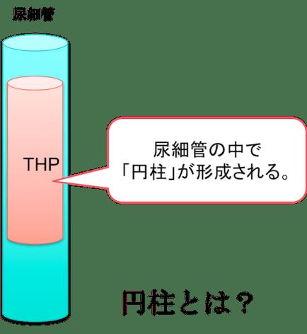 tamm-hroshfall protein