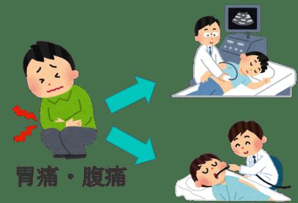 abdominal echo and fiber1