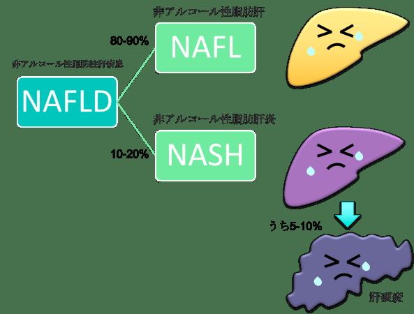 NAFLD NAFL NASH figure