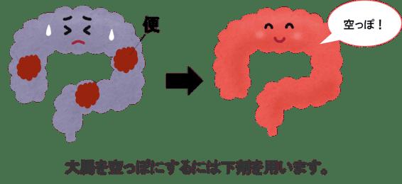 pre colon fiber2