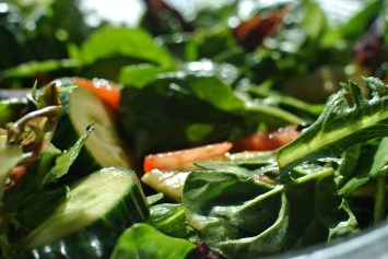 salad-872017_1920