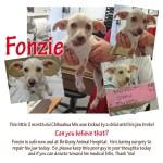 Fonzie - FB