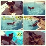 Sienna's fun in the sun