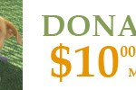 donate10