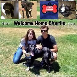 Charlie's furever family!