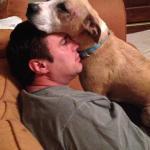Jessie, Boxer-Shepherd mix - Medical Animals In Need (19)