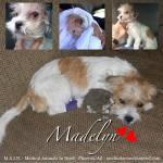Madelyn, June 2nd!