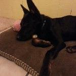 Ramona relaxing