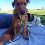 Simon enjoying park time