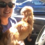Simon loves car rides!