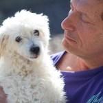 Tipper, Medical Animals In Need - M.A.I.N. - Phoenix, Arizona