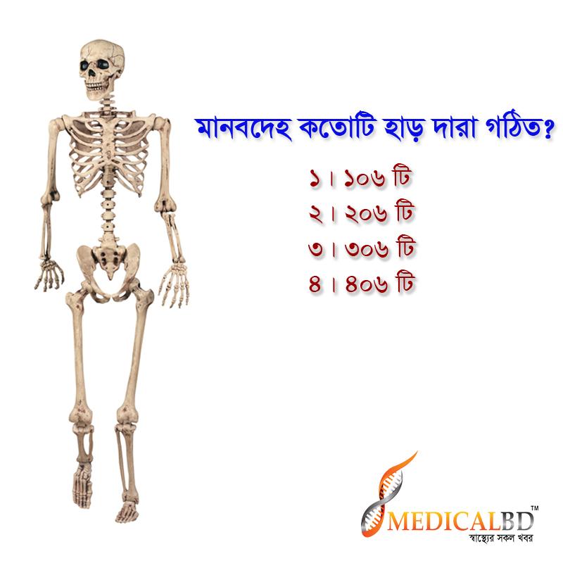 lifesize-poseable-skeleton