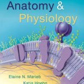 Anatomy & Physiology 6th Edition