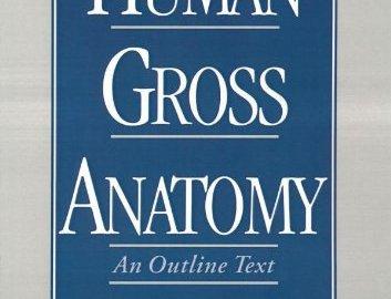 Human Gross Anatomy: An Outline Text
