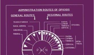 Regional Opioid Analgesia PDF