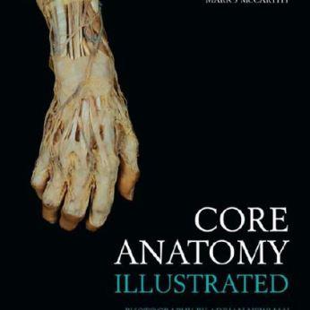 Core Anatomy Illustrated PDF