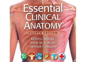 Essential Clinical Anatomy pdf 4th edition