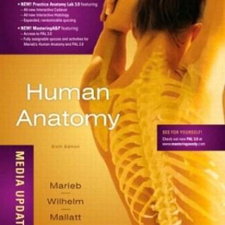 Human Anatomy Media Update 6th Edition PDF