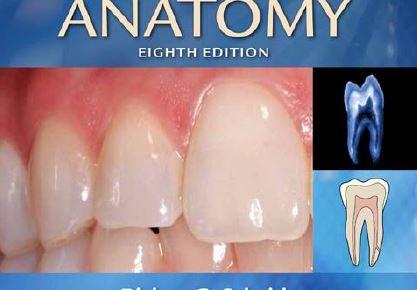 Woelfel's Dental Anatomy 8th Edition PDF