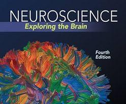 Neuroscience Exploring the Brain 4th Edition