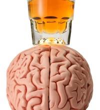 клетки мозга, мыши, алкоголь, зависимость