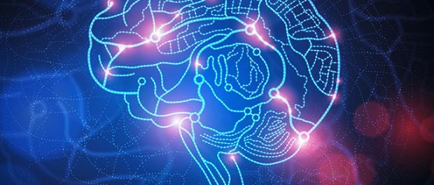 Разрабатываются лекарства, которые уменьшат вредное воздействие воспаления на мозг