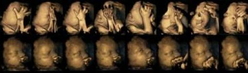 курение, беременность