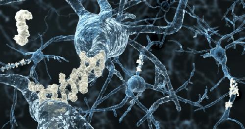 Ученые: обнаружена молекула, провоцирующая болезнь Альцгеймера