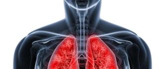 стволовые клетки, легкие, муковисцидоз, орган