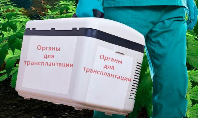 отторжение органа, трансплантация