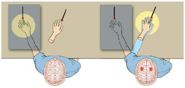 Иллюзия мраморной руки
