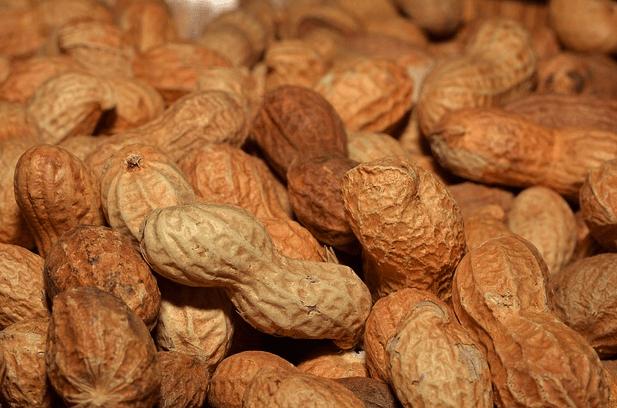 пищевая аллергия, арахис, дети