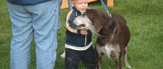 собака, астма