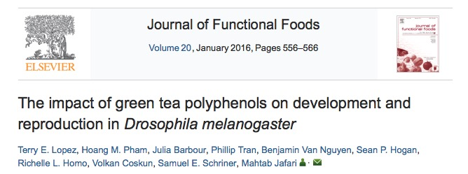 Lopez T. E. et al. The impact of green tea polyphenols on development and reproduction in Drosophila melanogaster //Journal of Functional Foods. – 2016. – Т. 20. – С. 556-566.